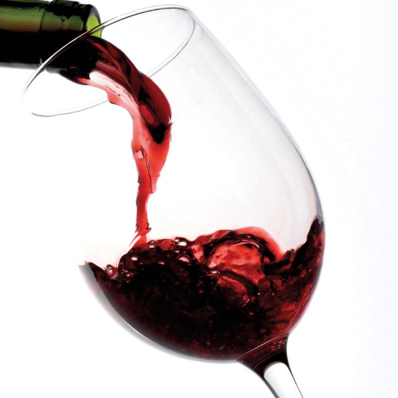 Vega del Geva Red Wine